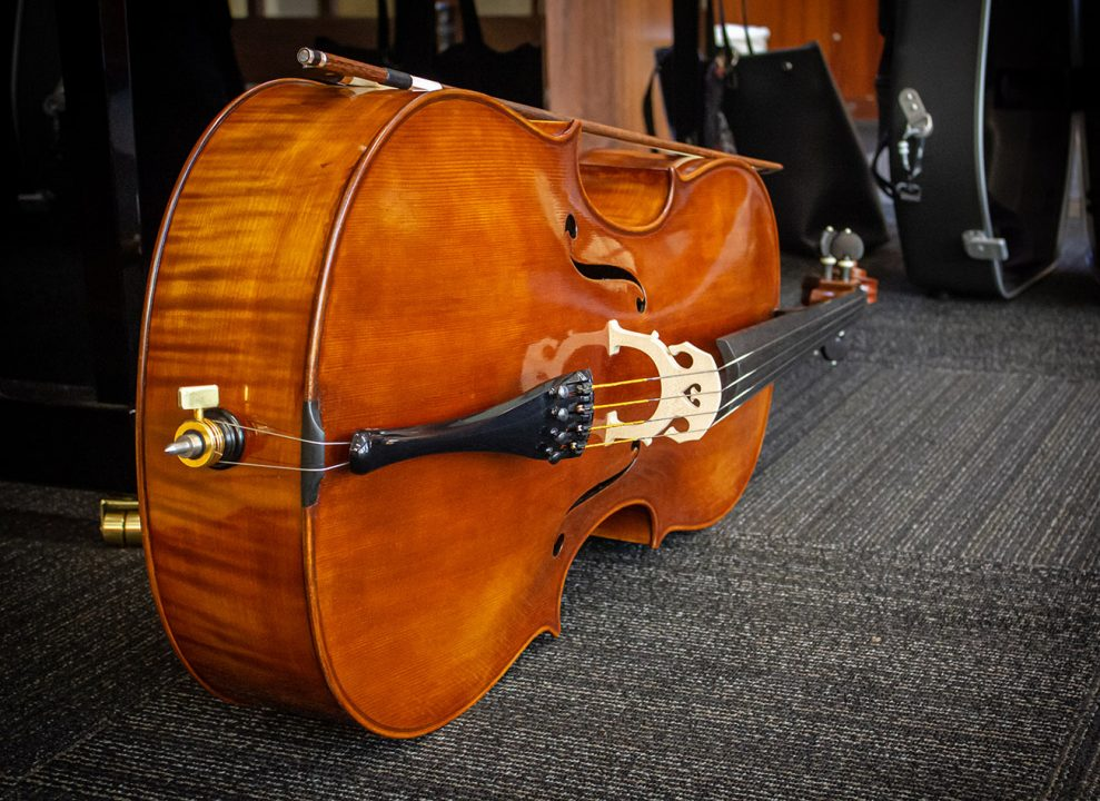 Musicians take great care of their instruments, maybe more than their own performance health